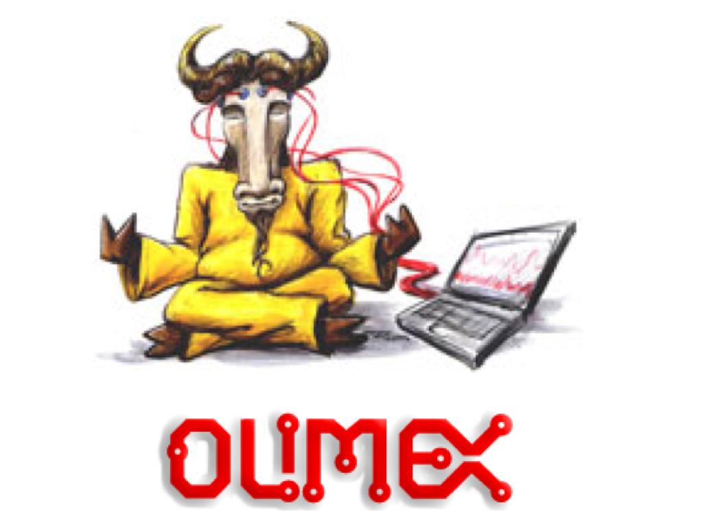 olimex.001
